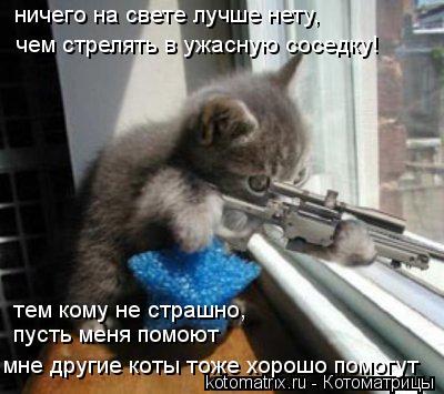 Котоматрица: ничего на свете лучше нету, чем стрелять в ужасную соседку! тем кому не страшно, пусть меня помоют мне другие коты тоже хорошо помогут