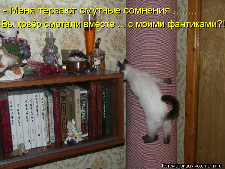 Котоматрица: - Меня терзают смутные сомнения ........ Вы ковёр смотали вместе ... с моими фантиками?!