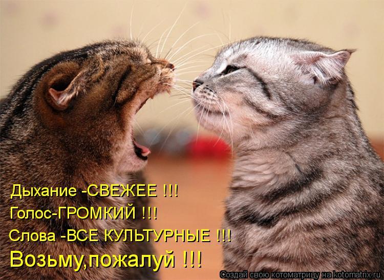 Котоматрица: Дыхание -СВЕЖЕЕ !!! Голос-ГРОМКИЙ !!! Слова -ВСЕ КУЛЬТУРНЫЕ !!! Возьму,пожалуй !!!