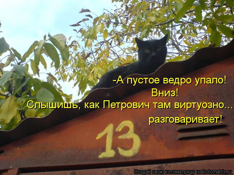 Котоматрица Kotomatritsa__X