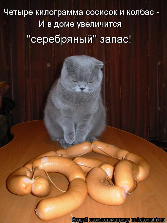 """Котоматрица: Четыре килограмма сосисок и колбас -  И в доме увеличится """"серебряный"""" запас!"""