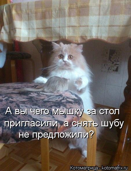Котоматрица: А вы чего мышку за стол пригласили, а снять шубу не предложили?