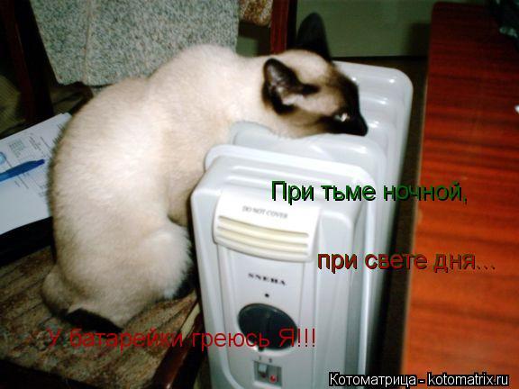 http://kotomatrix.ru/images/lolz/2013/03/12/kotomatritsa_IQ.jpg