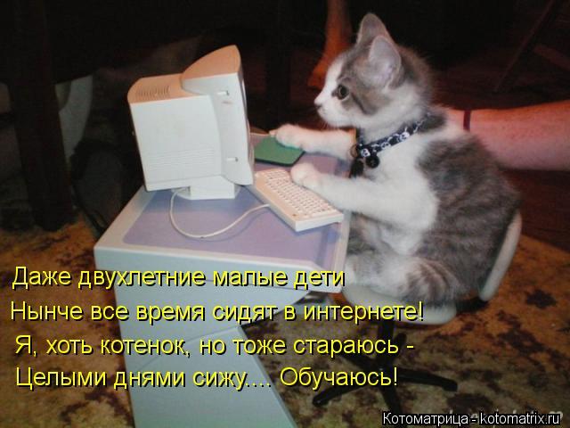 Котоматрица: Даже двухлетние малые дети Нынче все время сидят в интернете! Я, хоть котенок, но тоже стараюсь - Целыми днями сижу.... Обучаюсь!