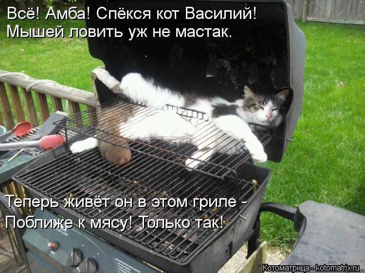 Котоматрица: Всё! Амба! Спёкся кот Василий!         Мышей ловить уж не мастак.  Теперь живёт он в этом гриле -  Поближе к мясу! Только так!