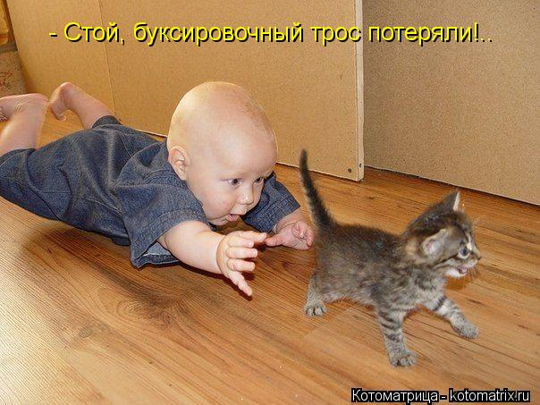 Котоматрица: - Стой, буксировочный трос потеряли!..