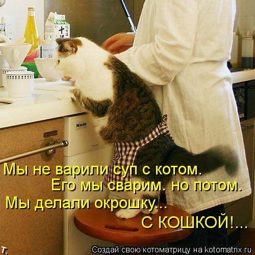 Котоматрица: Мы делали окрошку... Его мы сварим. но потом. Мы не варили суп с котом. С КОШКОЙ!...