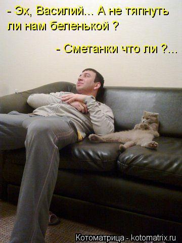 Котоматрица: - Эх, Василий... А не тяпнуть ли нам беленькой ? - Сметанки что ли ?...