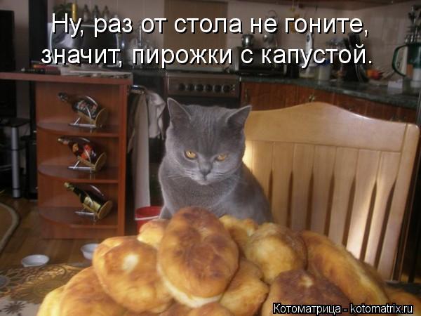 Котоматрица: Ну, раз от стола не гоните, значит, пирожки с капустой.