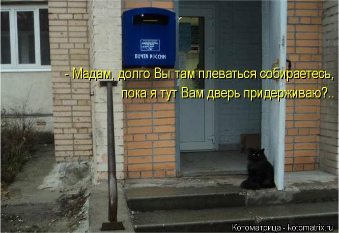 Котоматрица: - Мадам, долго Вы там плеваться собираетесь, пока я тут Вам дверь придерживаю?..