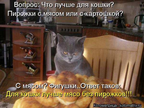 Котоматрица: Вопрос: Что лучше для кошки? Пирожки с мясом или с картошкой? С мясом? Фигушки..Ответ таков: Для кошки лучше мясо без пирожков!!!