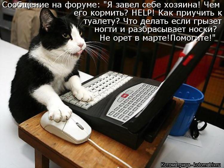 """Котоматрица: Сообщение на форуме: """"Я завел себе хозяина! Чем  его кормить? HELP! Как приучить к  туалету? Что делать если грызет ногти и разбрасывает носки? Н"""