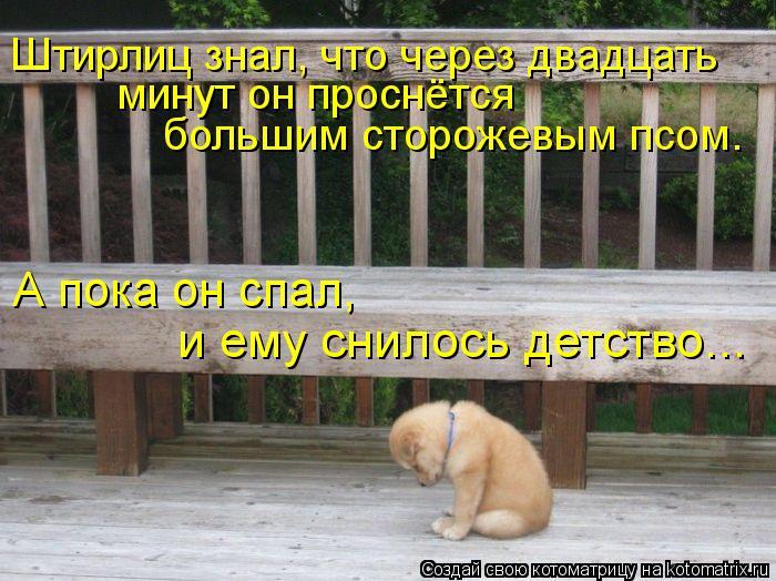 Котоматрица: Штирлиц знал, что через двадцать  минут он проснётся  большим сторожевым псом.  А пока он спал,  и ему снилось детство...