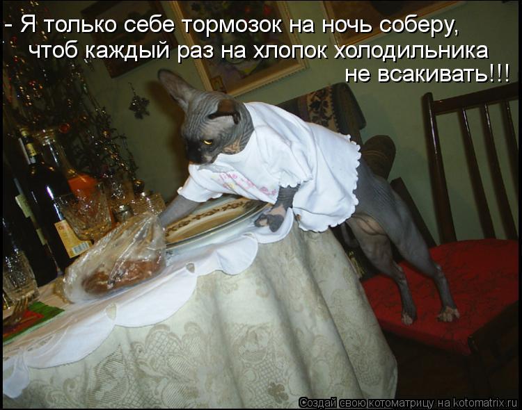 Котоматрица: - Я только себе тормозок на ночь соберу, чтоб каждый раз на хлопок холодильника  не всакивать!!!