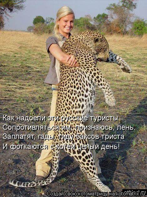 Котоматрица: Как надоели эти русские туристы  Сопротивляться им, признаюсь, лень.   Заплатят, гады, гиду баксов триста  И фоткаются с котей целый день!
