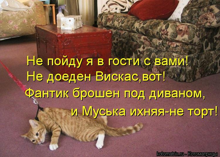 Котоматрица: Не пойду я в гости с вами! Не доеден Вискас,вот! Фантик брошен под диваном, и Муська ихняя-не торт!