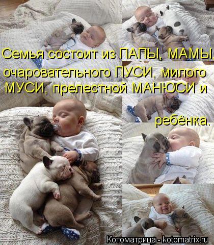 Котоматрица: Семья состоит из ПАПЫ, МАМЫ, очаровательного ПУСИ, милого МУСИ, прелестной МАНЮСИ и ребёнка.
