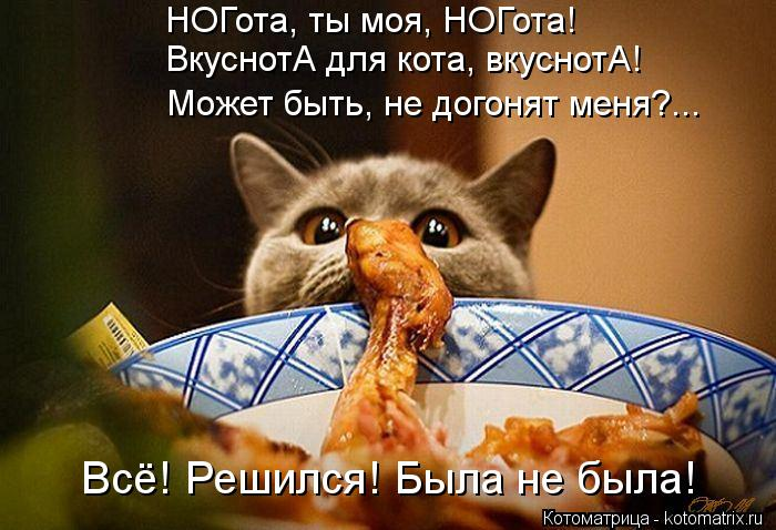 Котоматрица: НОГота, ты моя, НОГота! ВкуснотА для кота, вкуснотА! Может быть, не догонят меня?... Всё! Решился! Была не была!
