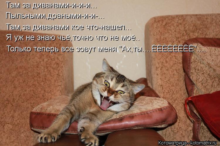 """Котоматрица: Там за диванами-и-и-и... Пыльными,драными-и-и-... Там,за диванами кое что-нашел... Я уж не знаю чьё,точно что не моё.. Только теперь все зовут меня """""""