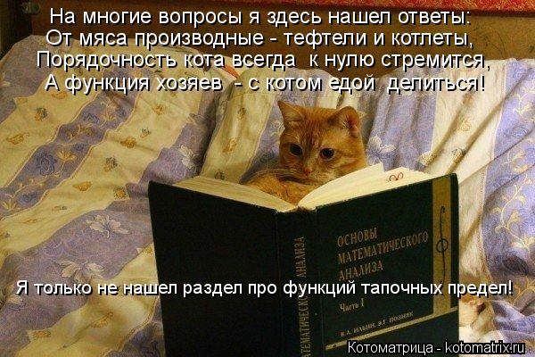 Котоматрица: На многие вопросы я здесь нашел ответы: От мяса производные - тефтели и котлеты, Порядочность кота всегда  к нулю стремится, А функция хозяев