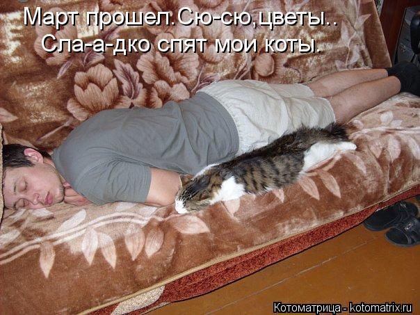 Котоматрица: Март прошел.Сю-сю,цветы.. Сла-а-дко спят мои коты.