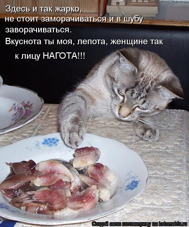 Котоматрица: Здесь и так жарко, не стоит заморачиваться и в шубу  заворачиваться. Вкуснота ты моя, лепота, женщине так к лицу НАГОТА!!!