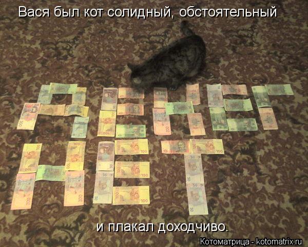 Котоматрица: Вася был кот солидный, обстоятельный и плакал доходчиво.