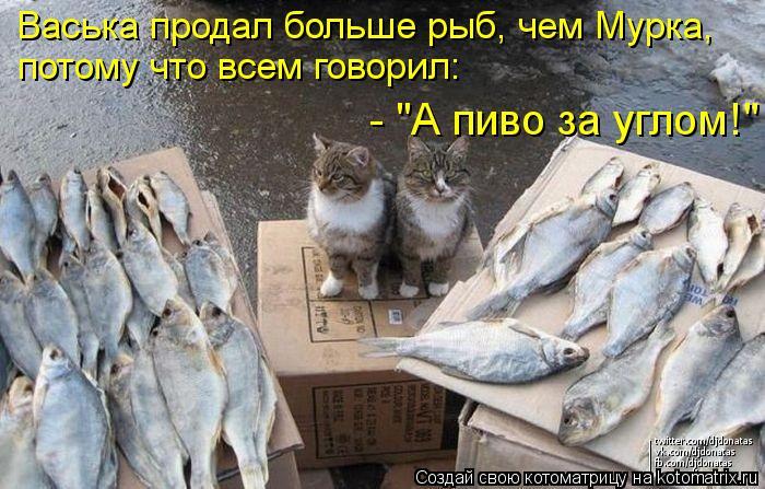 """Котоматрица: Васька продал больше рыб, чем Мурка,  потому что всем говорил:  - """"А пиво за углом!"""""""