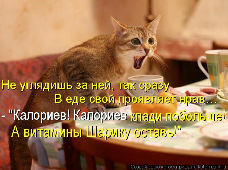 """Котоматрица: Не углядишь за ней, так сразу В еде свой проявляет нрав…  А витамины Шарику оставь!"""" - """"Калориев! Калориев  клади побольше!"""