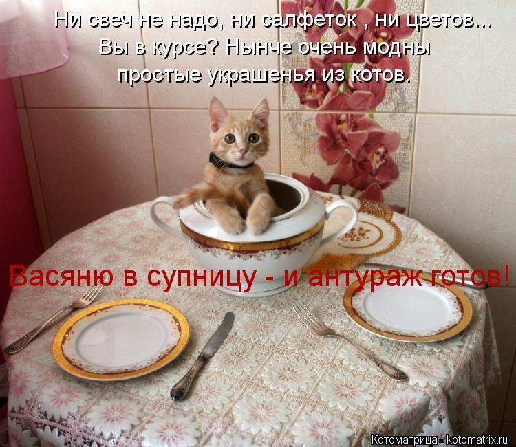 Котоматрица: Ни свеч не надо, ни салфеток , ни цветов... Вы в курсе? Нынче очень модны простые украшенья из котов. Васяню в супницу - и антураж готов!