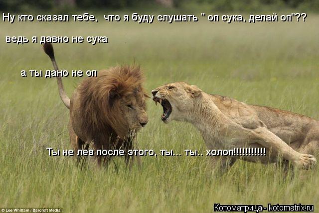 """Котоматрица: Ну кто сказал тебе,  что я буду слушать """" оп сука, делай оп""""?? Ты не лев после этого, ты... ты.. холоп!!!!!!!!!!! ведь я давно не сука а ты дано не оп"""