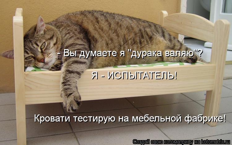 """Котоматрица: - Вы думаете я """"дурака валяю""""?  Я - ИСПЫТАТЕЛЬ! Кровати тестирую на мебельной фабрике!"""