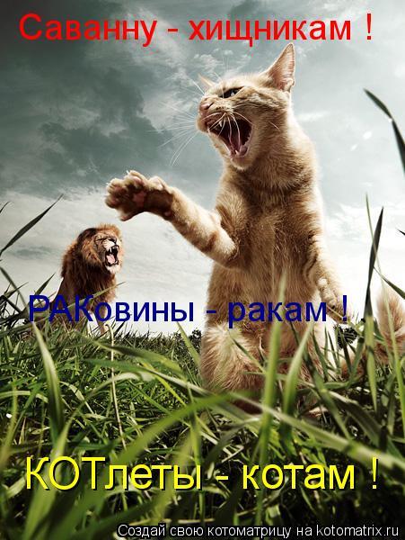 Котоматрица: Саванну - хищникам ! РАКовины - ракам ! КОТлеты - котам !