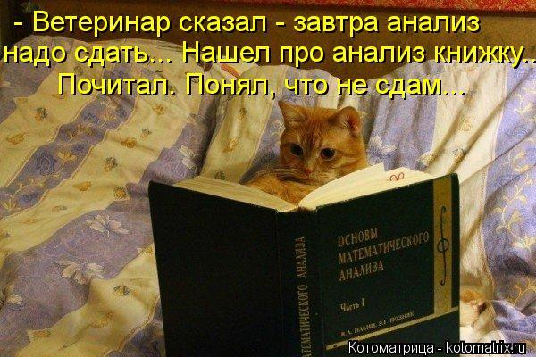 Котоматрица: - Ветеринар сказал - завтра анализ  надо сдать... Нашел про анализ книжку... Почитал. Понял, что не сдам...