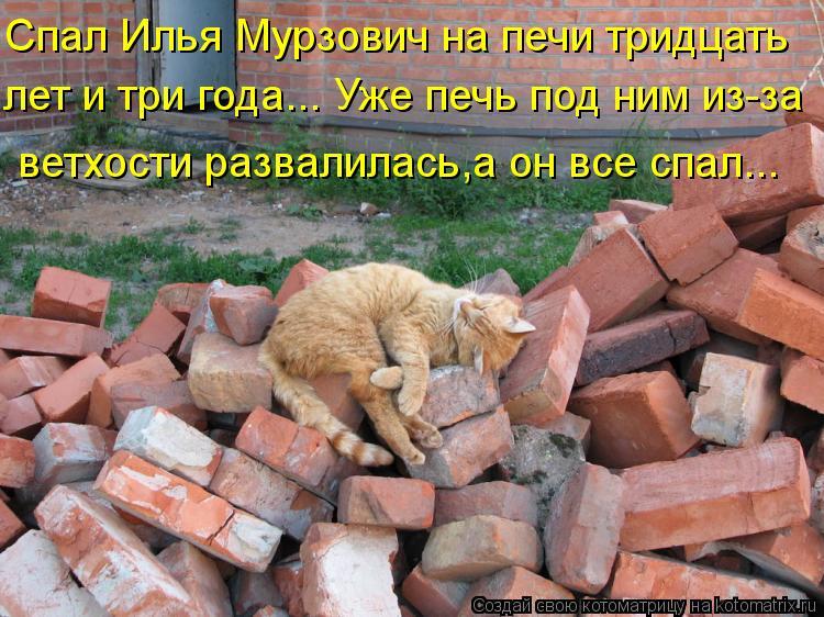 Котоматрица: Спал Илья Мурзович на печи тридцать лет и три года... Уже печь под ним из-за ветхости развалилась,а он все спал...