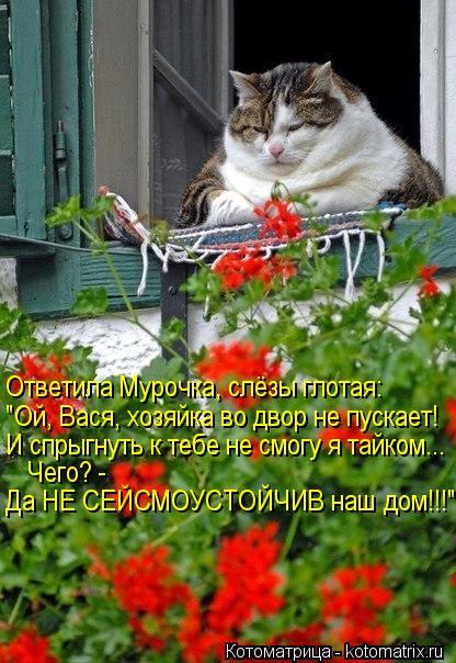 http://kotomatrix.ru/images/lolz/2013/03/22/kotomatritsa_cW.jpg