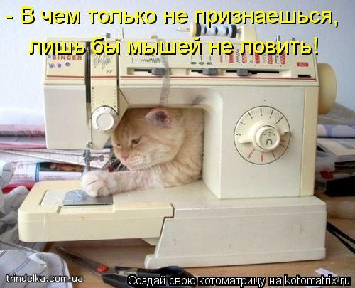 Котоматрица: - В чем только не признаешься, лишь бы мышей не ловить!
