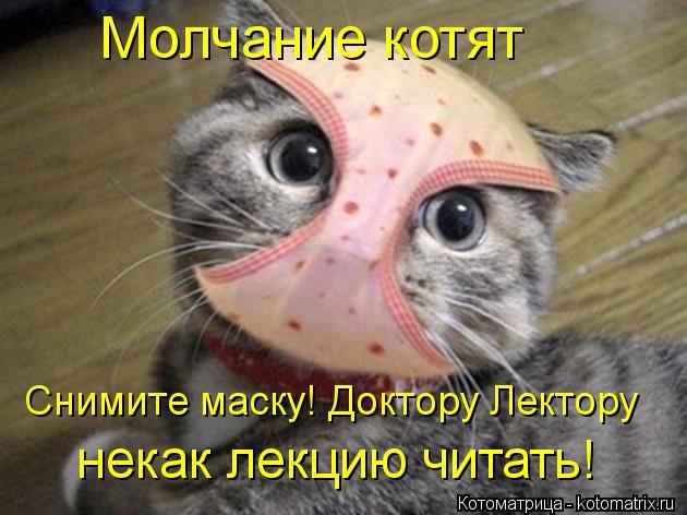 Котоматрица: Молчание котят Снимите маску! Доктору Лектору некак лекцию читать!
