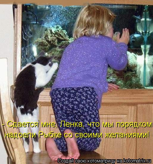 Котоматрица: - Сдается мне, Ленка, что мы порядком надоели Рыбке со своими желаниями!