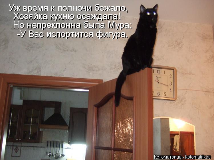 Котоматрица: Уж время к полночи бежало, Хозяйка кухню осаждала! Но непреклонна была Мура: -У Вас испортится фигура.