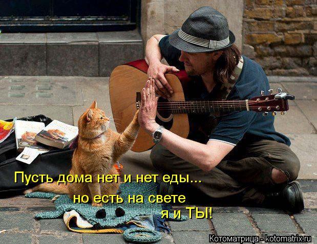 http://kotomatrix.ru/images/lolz/2013/03/24/kotomatritsa_Ty.jpg
