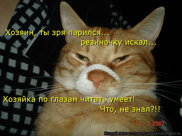 Котоматрица: Хозяин, ты зря парился...  резиночку искал... Хозяйка по глазам читать умеет! Что, не знал?!!