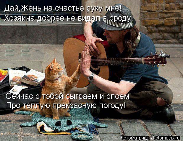 Котоматрица: Дай,Жень на счастье руку мне! Хозяина добрее не видал я сроду! Сейчас с тобой сыграем и споем Про теплую прекрасную погоду!