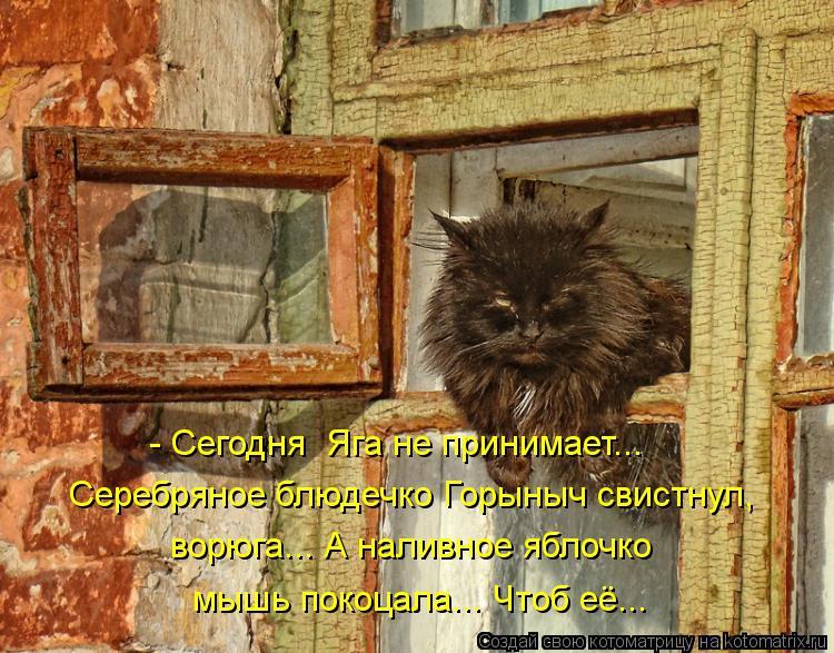 Котоматрица: - Сегодня  Яга не принимает... Серебряное блюдечко Горыныч свистнул, ворюга... А наливное яблочко мышь покоцала... Чтоб её...