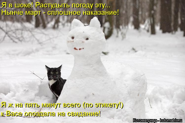 Котоматрица: Я в шоке! Растудыть погоду эту... Нынче март - сплошное наказание! Я ж на пять минут всего (по этикету!) к Васе опоздала на свидание!