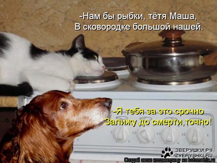 Котоматрица: -Я тебя за это срочно Залижу до смерти,точно! -Нам бы рыбки, тётя Маша, В сковородке большой нашей.