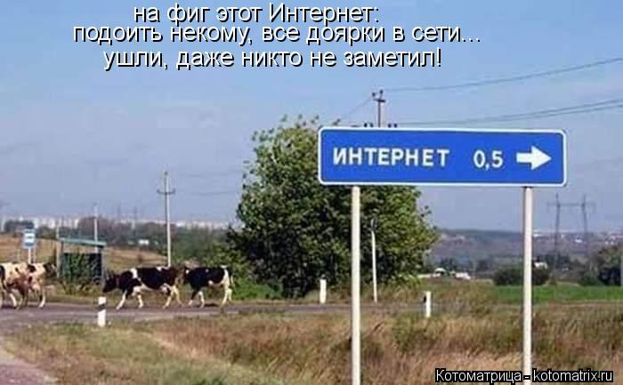 Котоматрица: на фиг этот Интернет: подоить некому, все доярки в сети... ушли, даже никто не заметил!