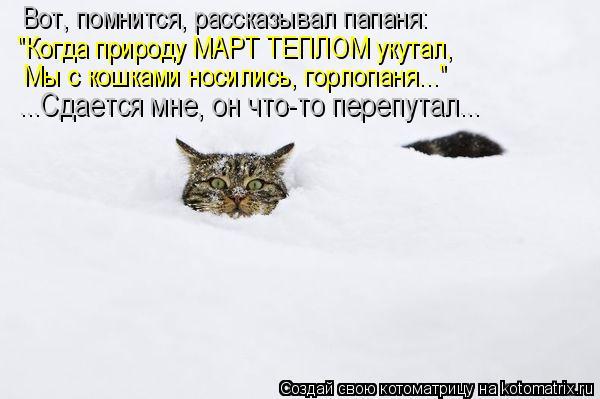 """Котоматрица: Вот, помнится, рассказывал папаня: """"Когда природу МАРТ ТЕПЛОМ укутал, Мы с кошками носились, горлопаня..."""" ...Сдается мне, он что-то перепутал..."""