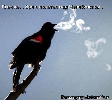 Котоматрица: Кхе-кхе... Зря я полетел над Челябинском...