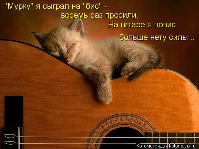 """Котоматрица: """"Мурку"""" я сыграл на """"бис"""" - восемь раз просили. На гитаре я повис, больше нету силы..."""